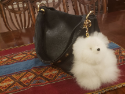 Alpaca Purse Pal